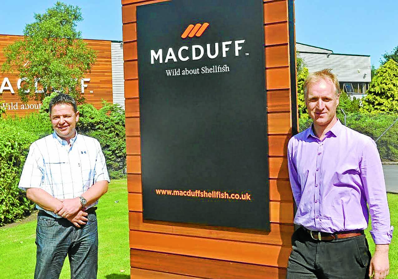 the importance of macduff in the