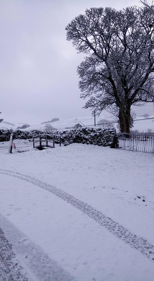 tunder snow