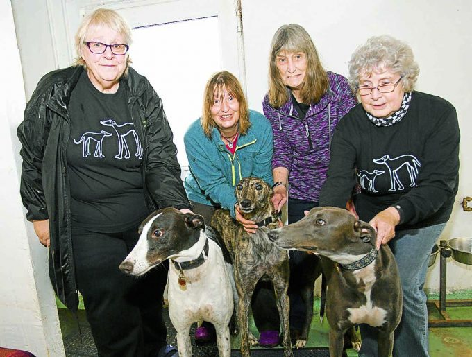 Audrey Riley, Mandy Bleasdale, Margaret Bleasdale, Susan Stairs, with Larky, Wolf and Odin