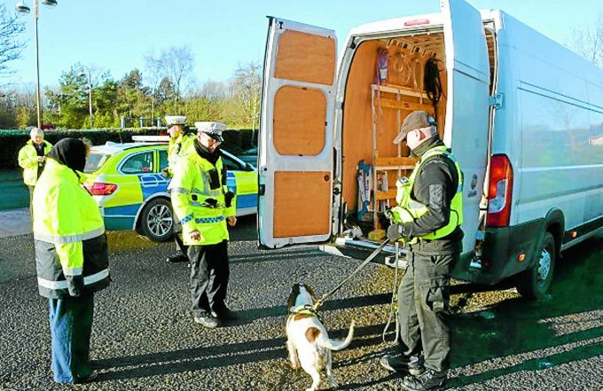 COUNTERFEIT CHECK . . .officers and detection dog Dixie carry out vehicle checks for counterfeit goods