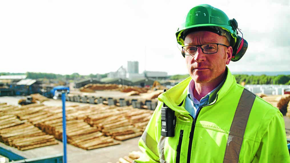 INVESTMENT . . . Andy Campbell manages the massive James Jones Sawmill at Lockerbie