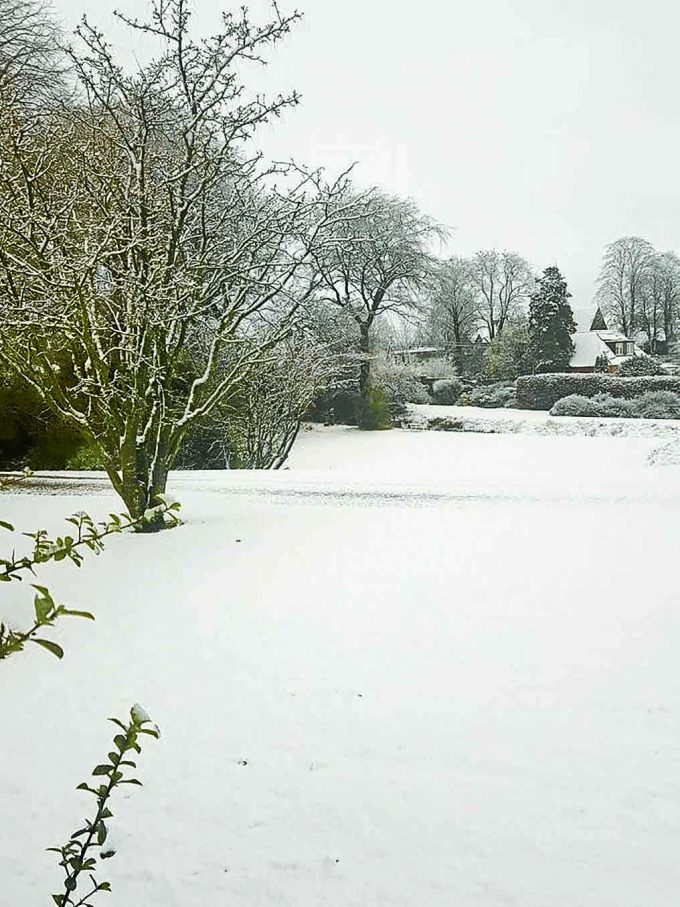 Winter at Waterbeck, by Alison Wilkinson