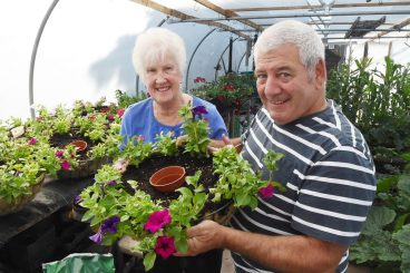 More flower power needed to make town bloom