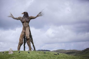 Wickerman 2016 cancelled