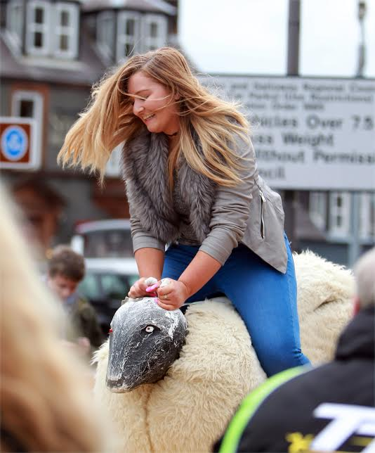 sheep bucking