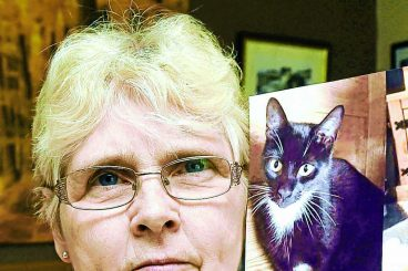 Curious case of the missing moggy