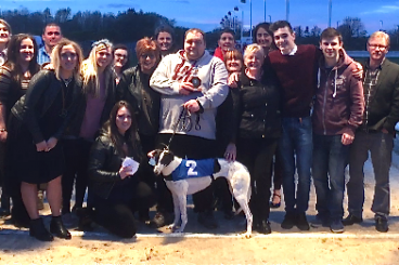 GREYHOUNDS: Race surprise as Dream delights at Gretna