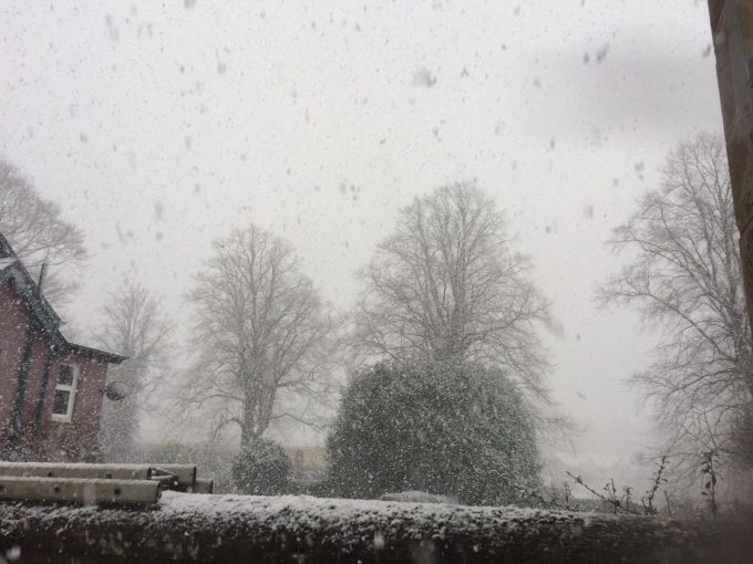 FALLING . . . snow in Moffat
