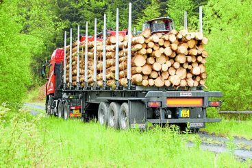 Timber transport cash announced