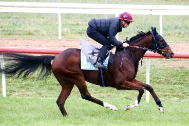 Nakeeta in form as big race looms