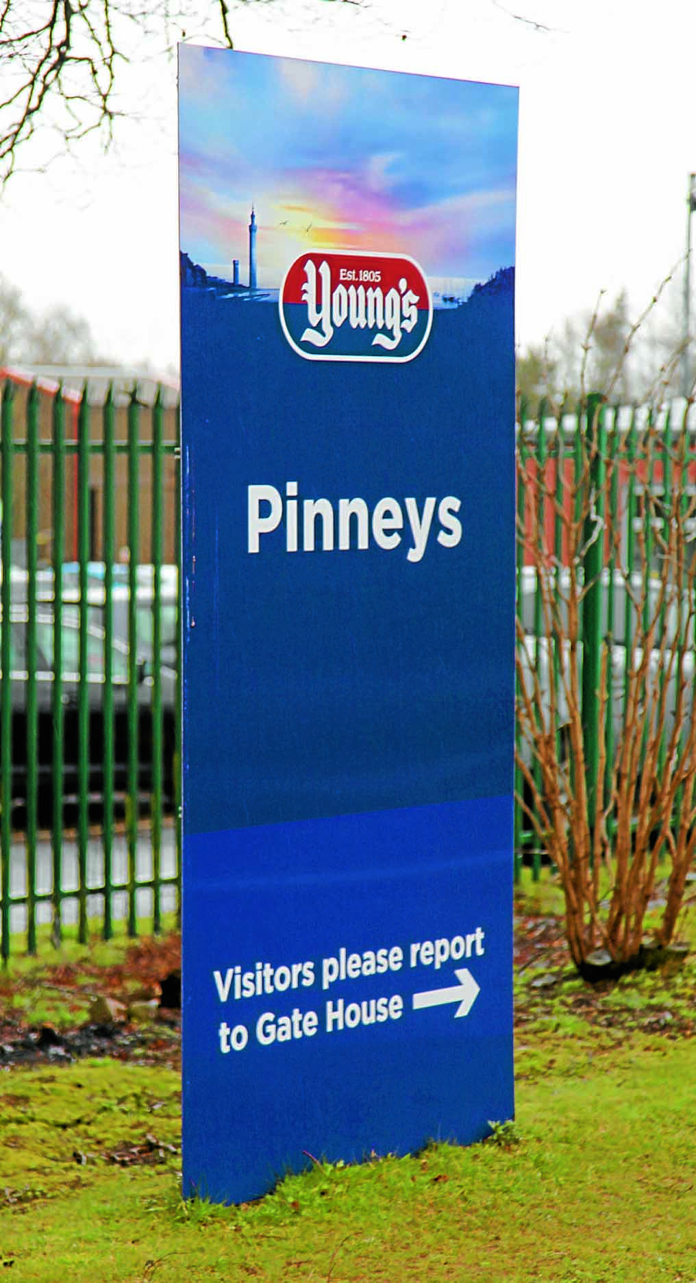 Pinneys' parent company for sale