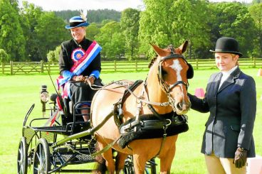 National joy for carriage drivers