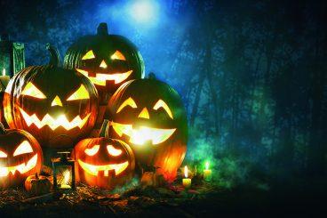 Pumpkin plans