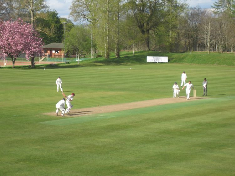 Dumfries cricket get their say