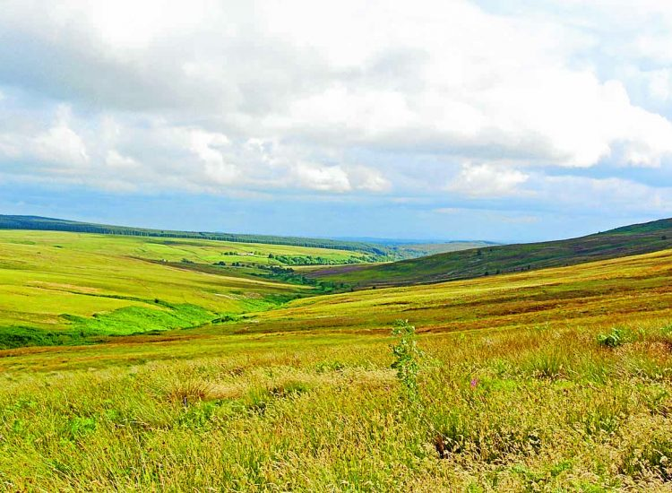 £300k moor buyout boost
