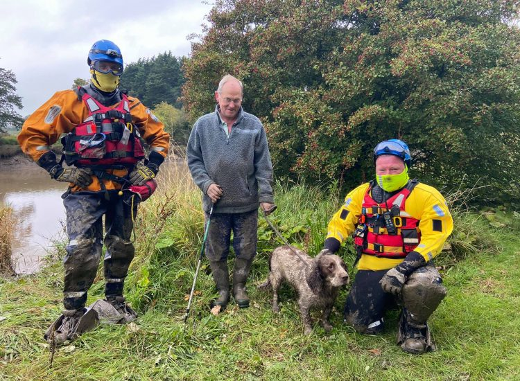 Coastguard to the rescue of stuck dog