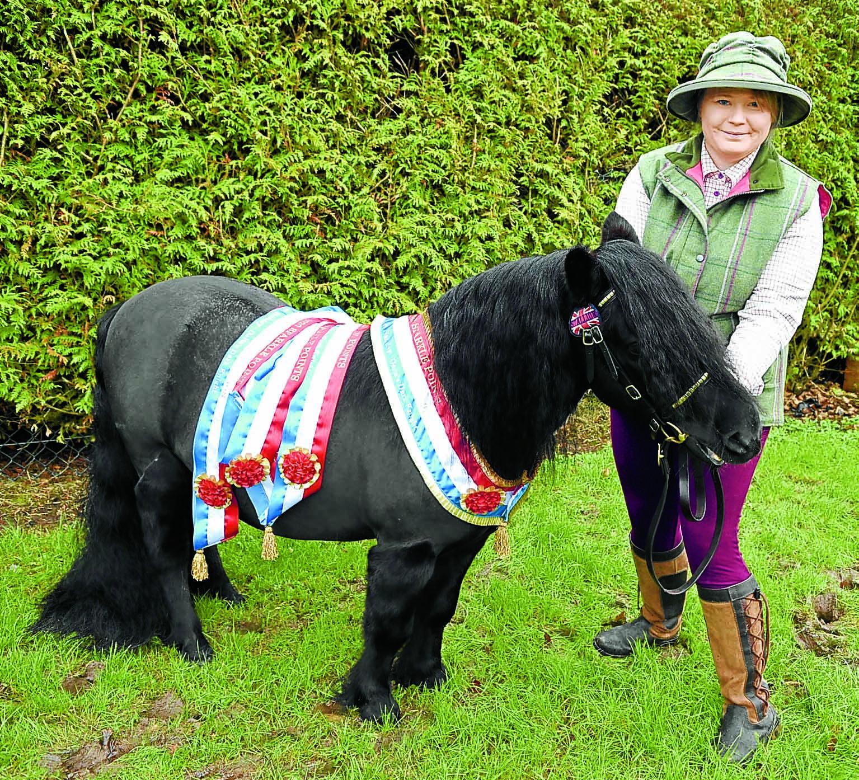 Garden ponies win points contest