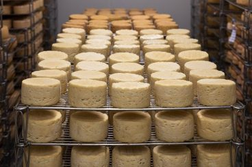 Cheese firm reveals Brexit export blow