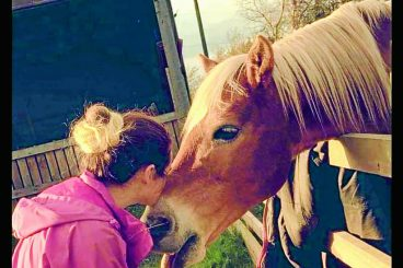 Family's appeal for help to save pony