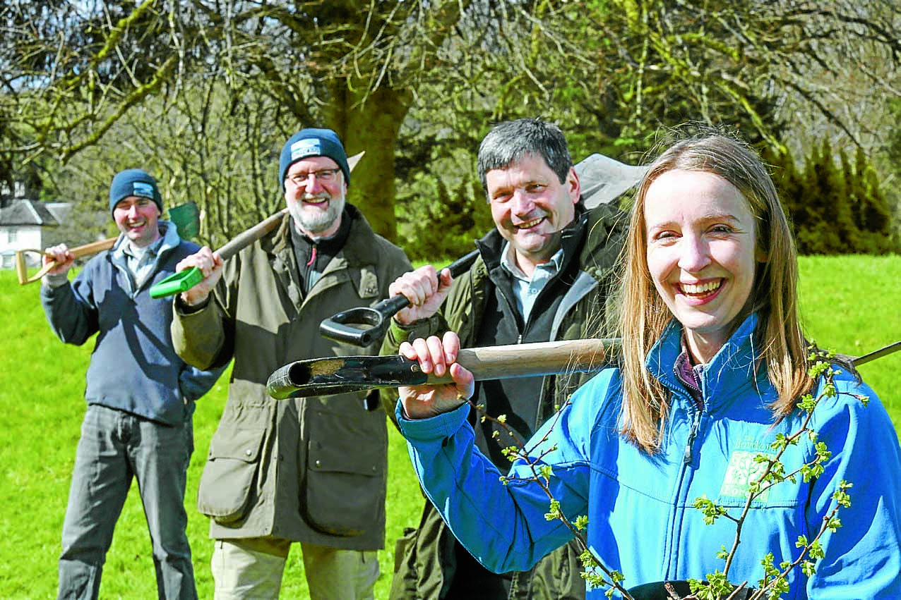 Tree planting initiative takes root