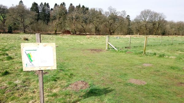 Bluebell Wood plan dropped after protests