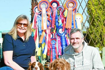 Flyball fans to set up new canine club