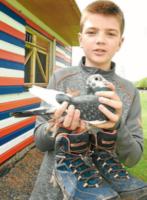 Pigeon pair prepare for triple peak  challenge
