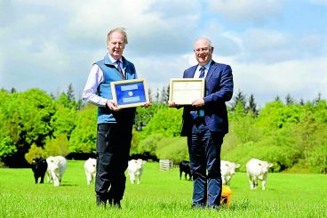 Annandale farmer wins prestigious award