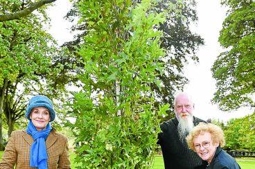Jubilee initiative off to a tree-mendous start